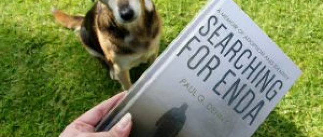 Searching for Enda - Review